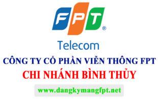 FPT BINH THUY
